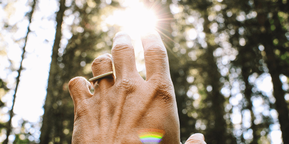 Hand facing the sun light in the forest  healing frequencies and Solfeggio Frequencies 417 hz 528 hz